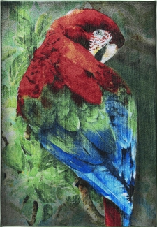 Confetti Scarlet Macaw Yeşil Çocuk Halısı